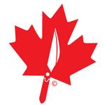 Surgeons In Canada Logo